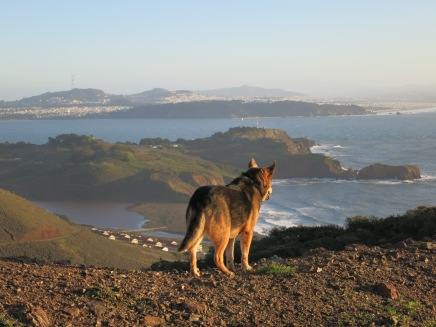 Lexie taking in the view over Rodeo Beach in the Marin Headlands, California