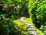 Path in the Japanese Garden