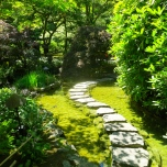 Path in the Japanese Garden